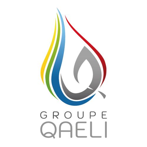 logo-GROUPE-QAELI-fond-blanc-300-carre-lorflam.png